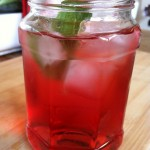 Minty Lemon Cranberry Apple Ginger Ale Soda