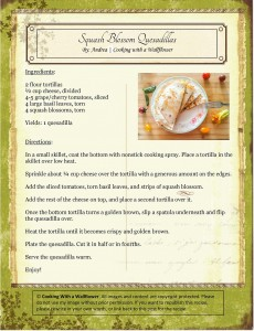 Squash Blossoms Quesadillas Recipe Card