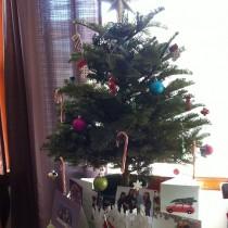 Life of a Wallflower - Christmas Holidays