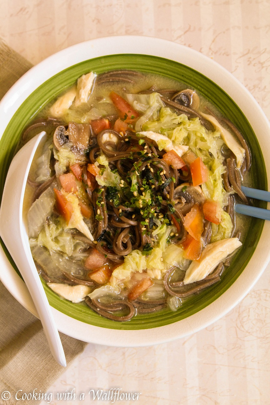 Asian Chicken and Vegetable Noodle Soup