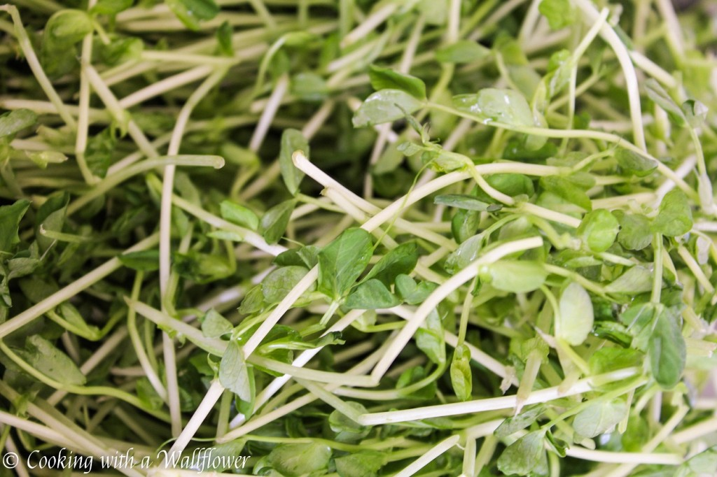 Garlic Pea Sprouts Stir Fry | Cooking with a Wallflower