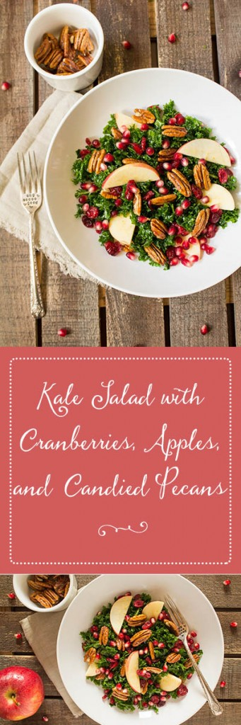 Kale Salad with Cranberries, Apples, and Candied Pecans | Cooking with a Wallflower  Bite sized kale tossed with dried cranberries, pomegranate arils, sweet Gala apples, and candied pecans, then drizzled with poppyseed dressing. This kale salad with cranberries, apples, and candied pecans is delicious, refreshing, and perfect for fall.