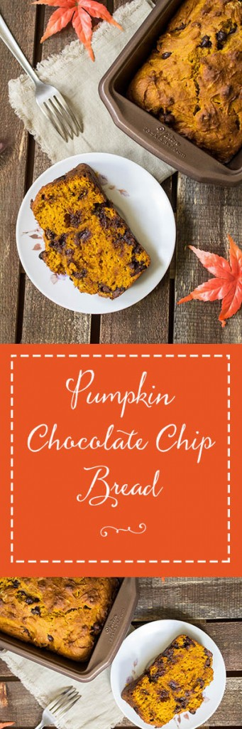Pumpkin Chocolate Chip Bread - Spiced pumpkin bread filled with semi-sweet chocolate chips in every delicious bite. This pumpkin chocolate chip bread is the perfect treat for fall.