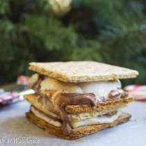 Peppermint Bark S'mores | Cooking with a Wallflower