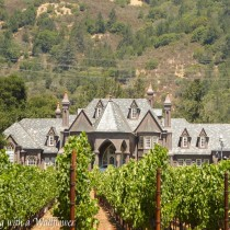 Sonoma Valley   Cooking with a Wallflower