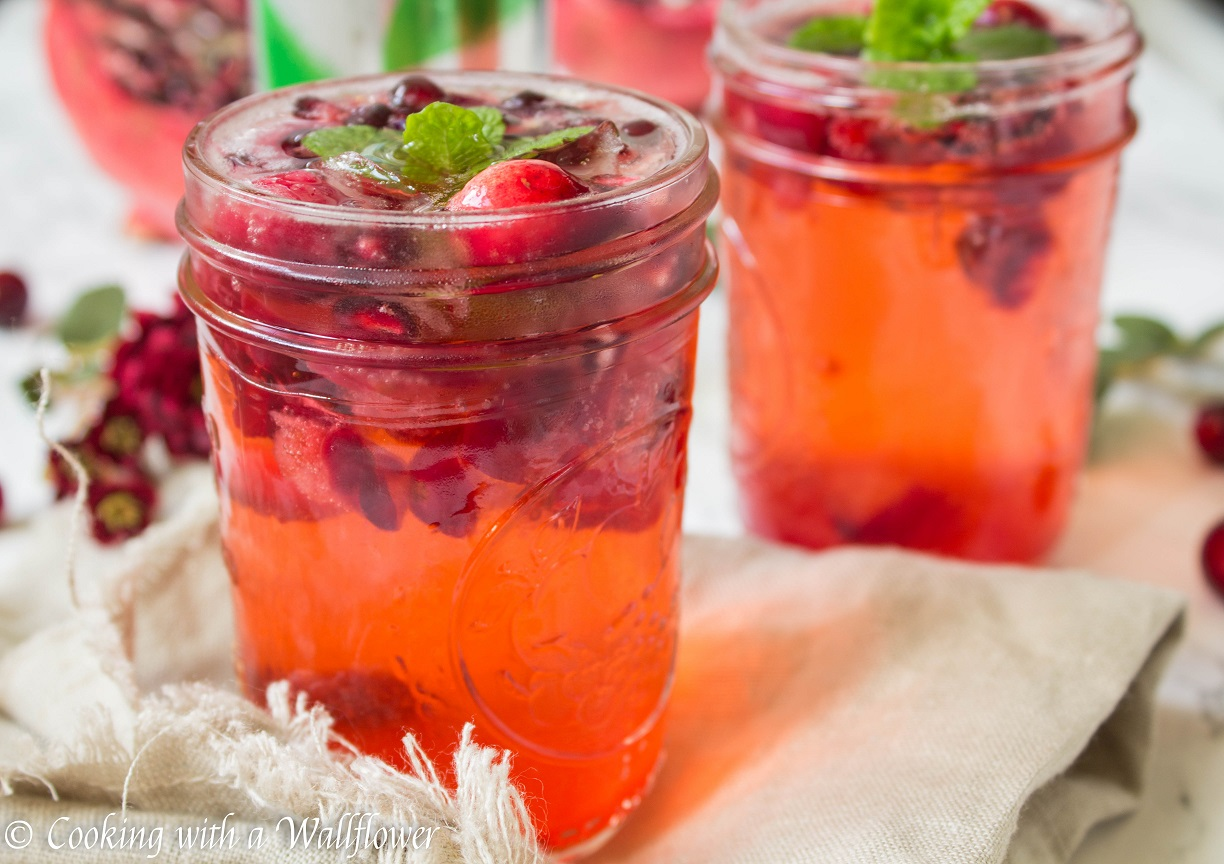 more fun recipes featuring dasani sparkling here sparkling cranberry ...