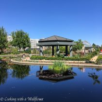 Destination - Discovering Colorado Day 3 | Cooking with a Wallflower