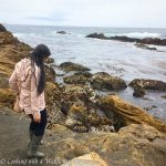 Destination: Point Lobos State Reserve