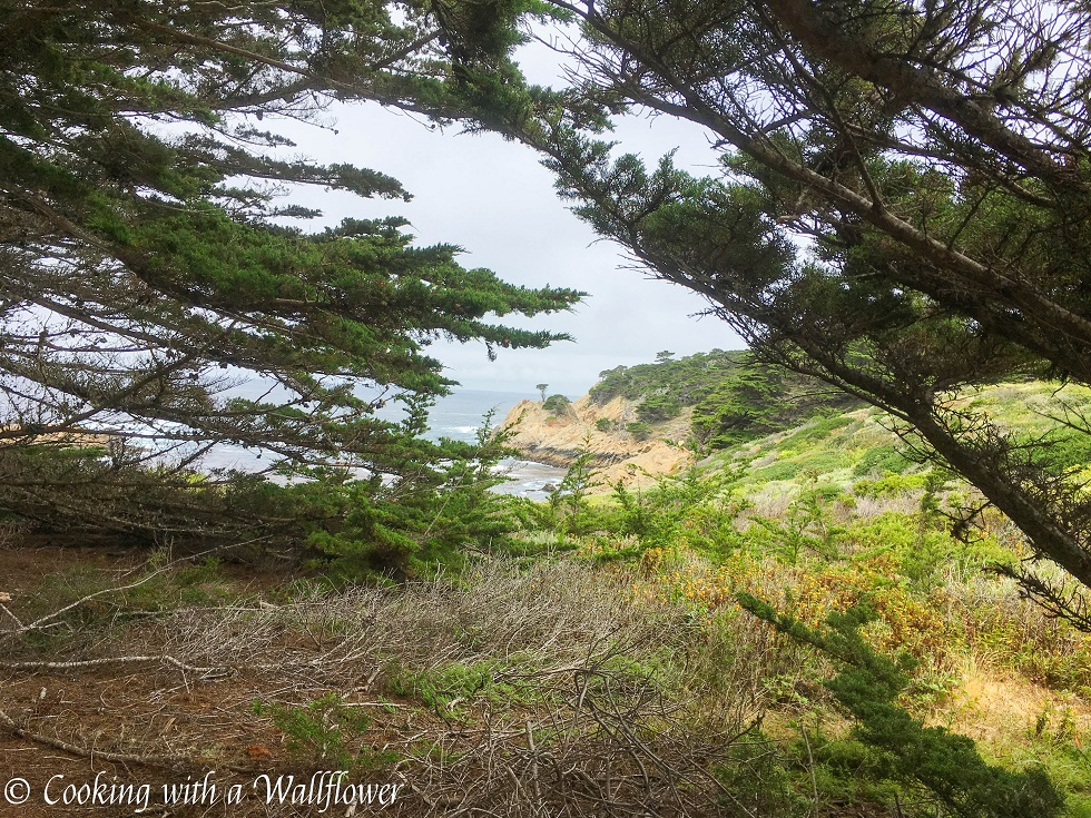 Point Lobos State Reserve | Cooking with a Wallflower