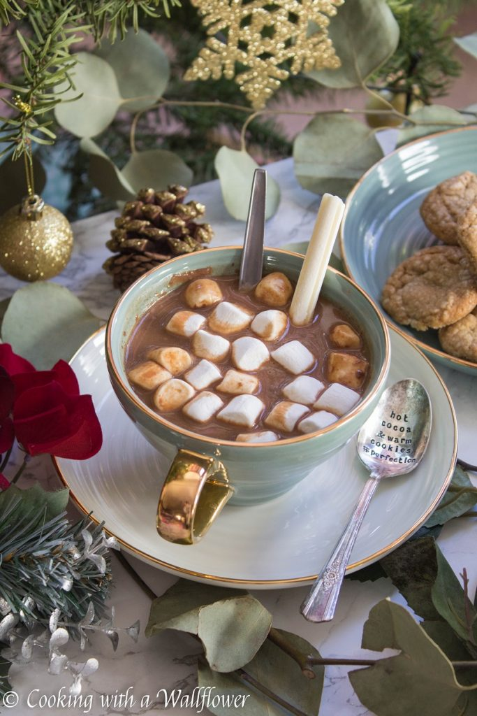 Hot Chocolate Oatmeal Latte   Cooking with a Wallflower
