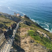 Destination: Point Reyes | Cooking with a Wallflower