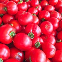 Dry Farmed Early Girl Tomatoes