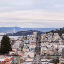 The View of SF from Lombard Street