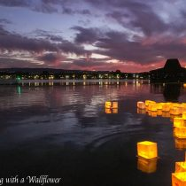 Water Lantern Festival | Cooking with a Wallflower