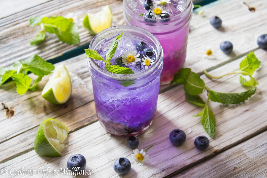Blueberry Gin Mojito | Cooking with a Wallflower