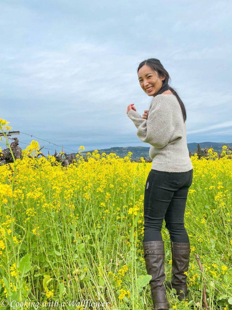 Mustards in Napa Valley