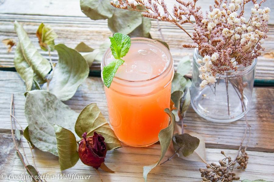 Sparkling Guava Lemonade